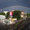 きれいな虹が出ていました